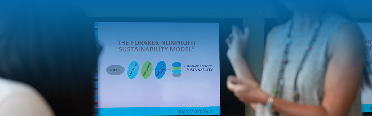 Explore the elements of nonprofit sustainability